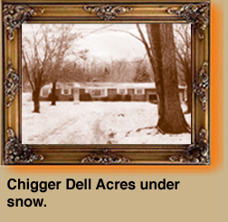 Chigger Dell Acres